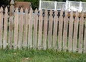 Заборы и ограды своими руками