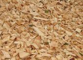 Древесные опилки как удобрение