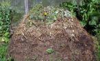Материалы для компоста