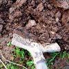 Фекалии в компост