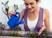 Проблемы в саду — как правильно ухаживать за растениями