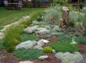 Альпинарии и рокарии в саду