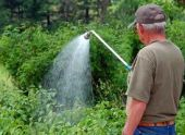 Как правильно поливать сад и огород