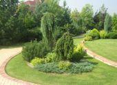 Ландшафтное озеленение приусадебного участка