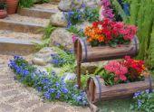 Этапы устройства цветника