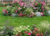 Идеи оформления цветников