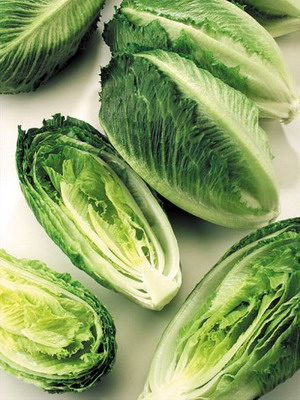 Разновидность салатов растение — pic 6