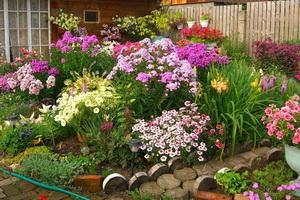Цветники во дворе своими руками фото 692
